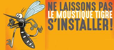 Ne laissons pas le moustique tigre s'installer !
