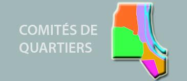 Compte-rendu des Comités de Quartiers de l'automne 2020